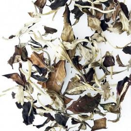 """""""Wild Moonlight Yunnan"""" - White Puerh Tea"""