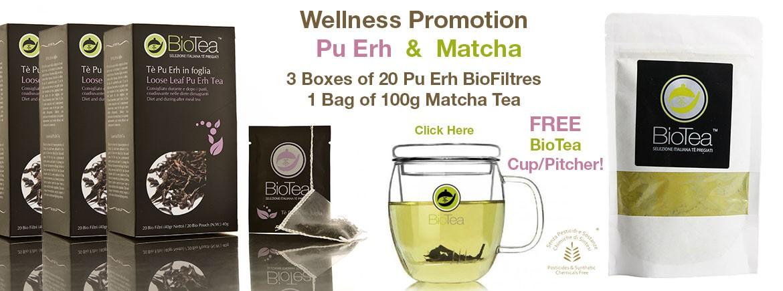 Wellness Promotion Puerh Matcha