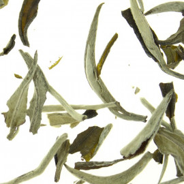 """Guangxi Silver Needle Top Grade"" Special Selection - Loose Leaf  White Tea"